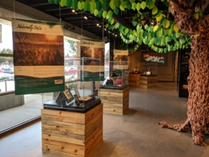 Museum - PoCo Heritage
