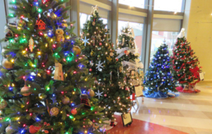 7th Annual Christmas Tree Festival